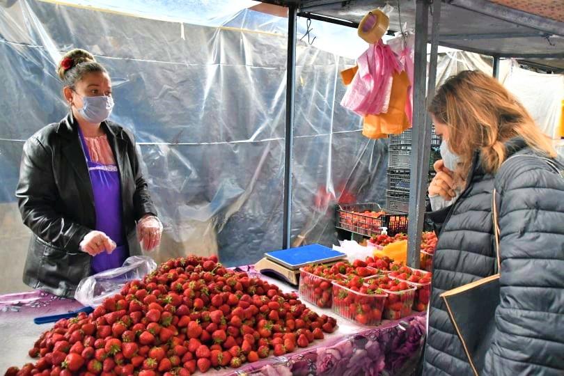 Piața Centrală comerț vânzători căpșune